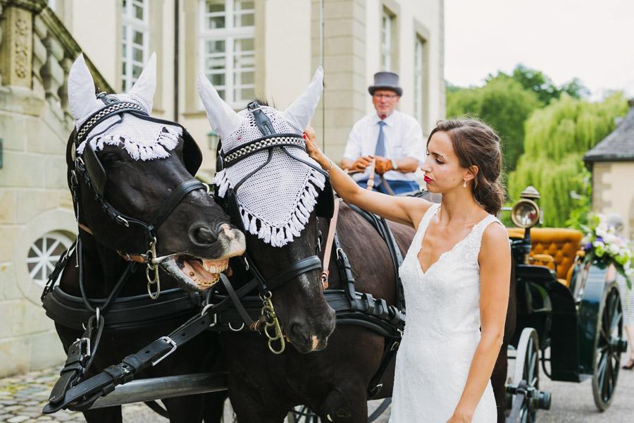 Hochzeit Schloss Pferde